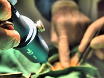 Chirurgie, clinique vétérinaire de la Fure