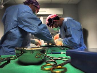 Service chirurgie, clinique vétérinaire de la Fure